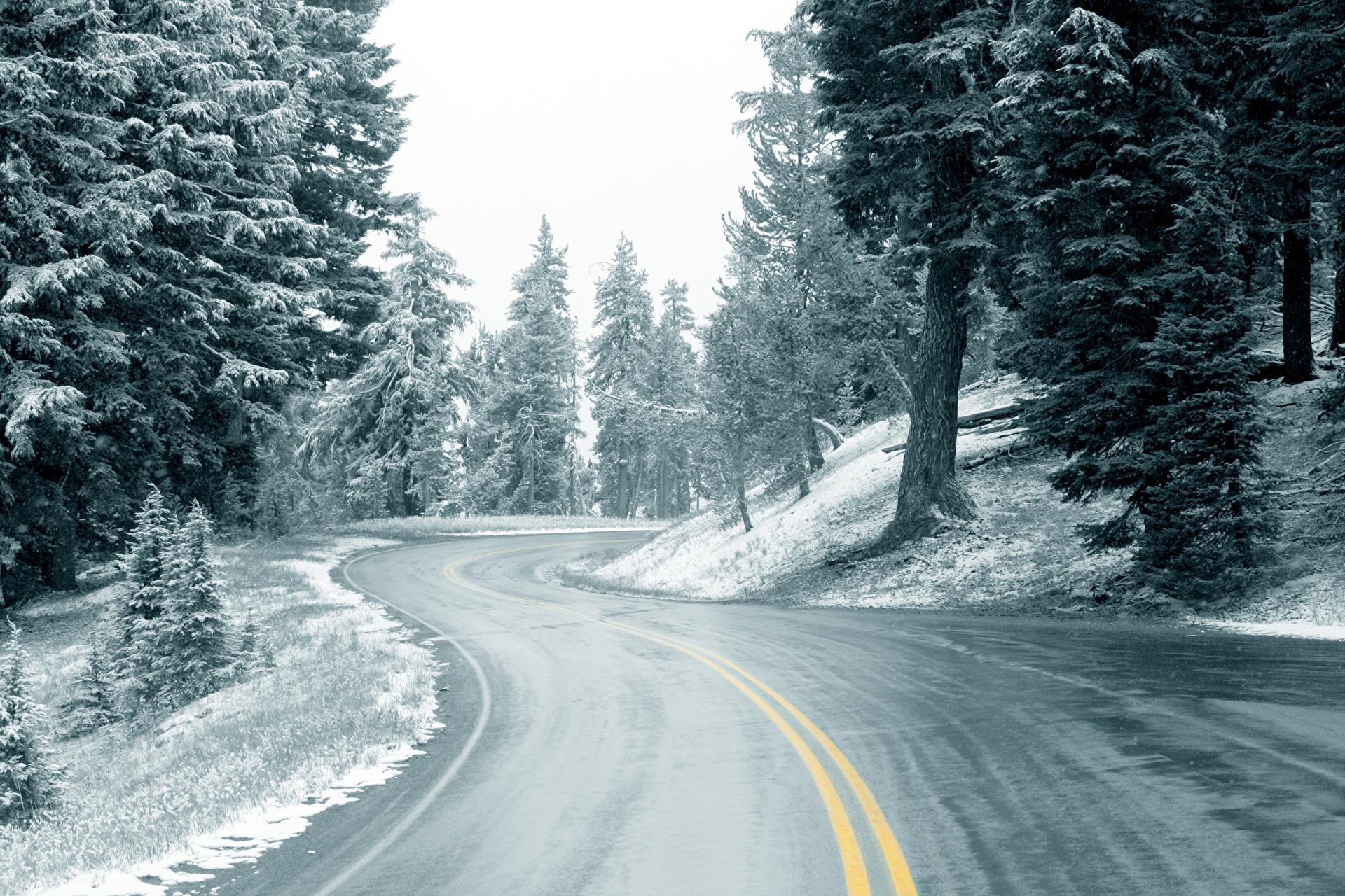 снег на дороге картинки фотографы видном