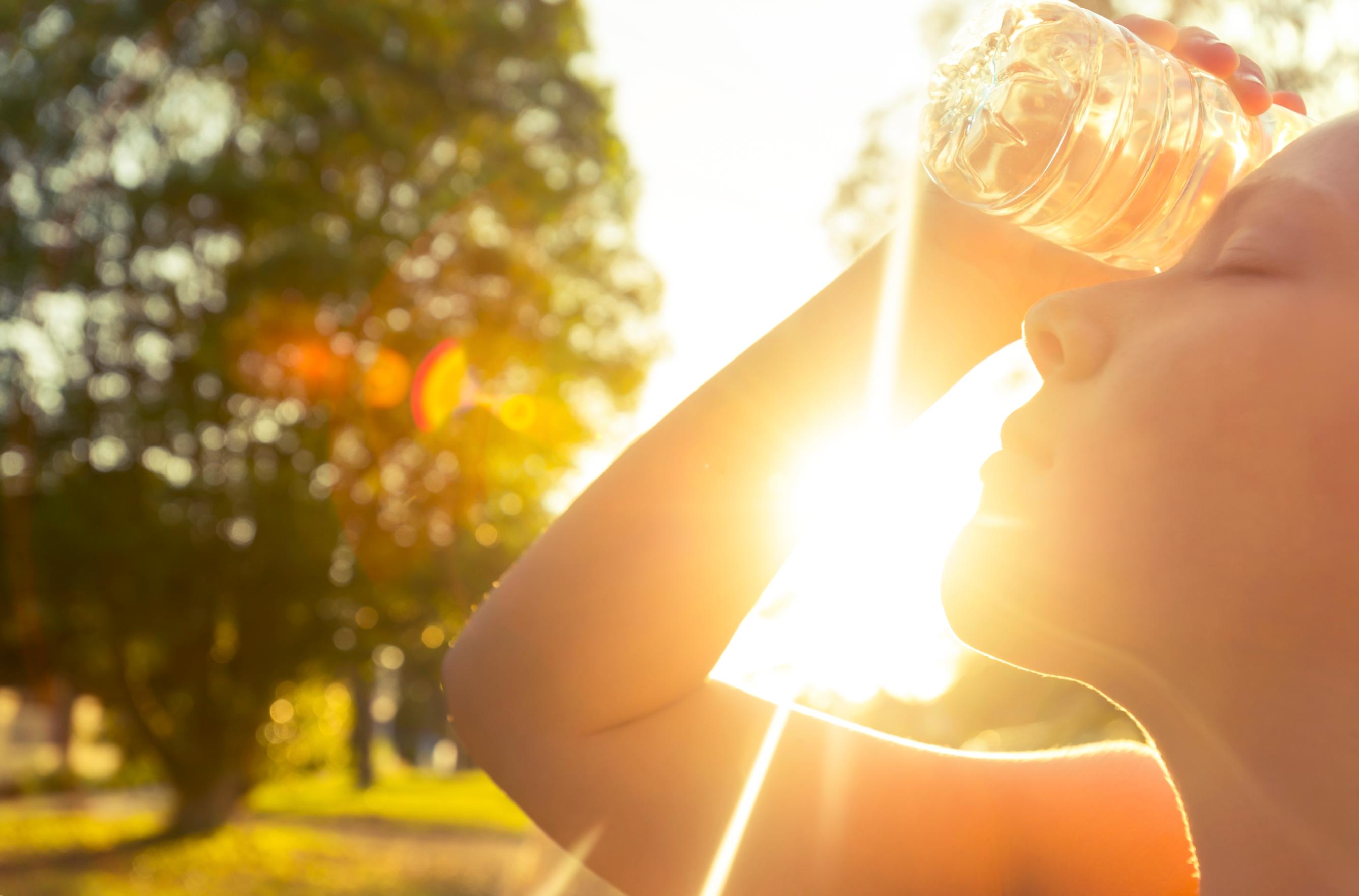 Ближайшие выходные в Курской области будут жаркими и солнечными